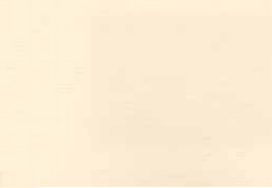 Krem beyaz, hareli Renk No 4444